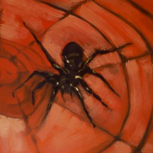pająk 2